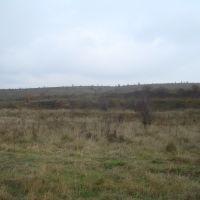 Осенний пейзаж, Гусятин