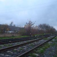 Станция Гусятин. Вид в сторону Копычинец, Закупного, Гусятин