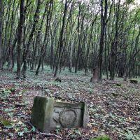 Струсів - старий цвинтар, Струсов - старое кладбище, Заложцы