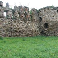 Микулинці, замок, Заложцы