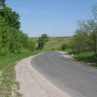 дорога до Микулинців ♦ road view, Заложцы