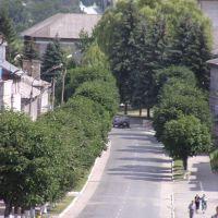 вул. Б.Хмельницького, Зборов