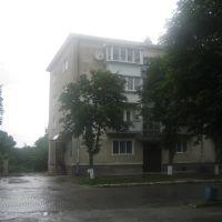 Зборів, Б. Хмельницького, 20 (2009), Зборов