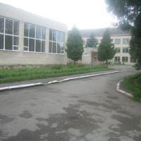 Зборівська школа (2009), Зборов
