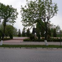 Шевченківська площа, Зборов
