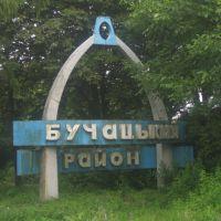 Вїзд в Бучацький район (2009), Золотники