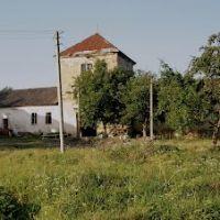 Замок Потоцких. Фортификационное сооружение, XVII в., Золотойпоток