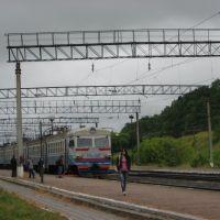 """Залізнична станція """"Озерна"""", Козлов"""