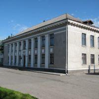 Школа мистецтв/School of arts, Козова