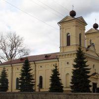 Польский костел, нач. XXI в, Кременец