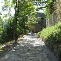 Дорога до руїн замку, Теребовля