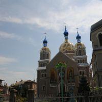 GOLD CHURCH FROM, Теребовля