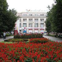 Квітучий оазис*, Тернополь
