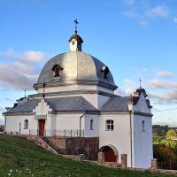 Струсів - церква св.Миколая монастиря василіан, Strusiv - church, Шумское