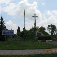Меморіал односельцям с.Мишковичі, Шумское