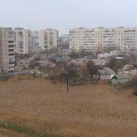 Болотце во дворе домов (2010.11.05), Балаклея