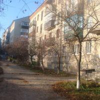 Двор дома № 79 (2010.11.15), Балаклея