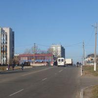 """Дорога к маг. """"Мрія"""" (2010.11.15), Балаклея"""