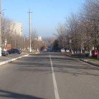 ул. Ленина (2010.11.15), Балаклея