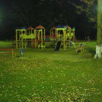 Осенняя детская площадка ночью 8.11.2010, Балаклея