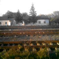 Околоток, Балаклея
