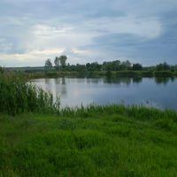 Dry Torets, Барвенково