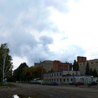 Комбикормовый завод, Близнюки