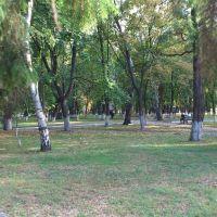 bogodukhiv park, Богодухов