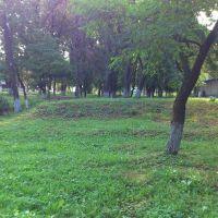 park, Богодухов