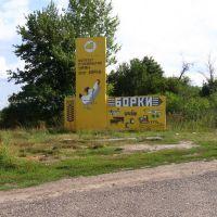 Поворотный знак на славное село Борки, Борки