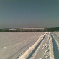 Path to anywhere ..., Борки