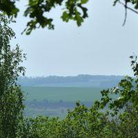 Вид с горы, Борки