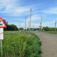 Переезд вблизи ст.Борки. Railway crossing near Birky st., Борки