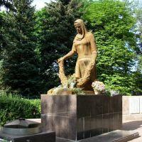 Памятник ВОВ. The GPW monument, Борки