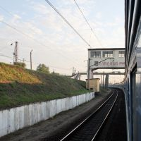 View from the Train, Боровая
