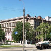 Общеобразовательная школа І–ІІІ ступеней №59 (Чаплыгинский пер., 12), Боровая