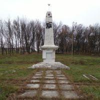 Памятник Лаптевым, Валки