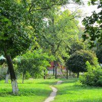 Парк, Волчанск