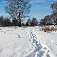 зимнее утро, Волчанск