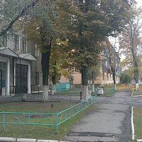 Улица Фрунзе, Готвальд