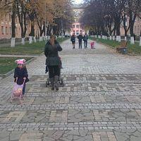 Новая аллея по улице Ленина, Готвальд