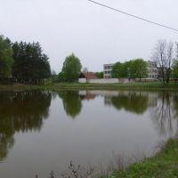 Гутянская школа, Гуты