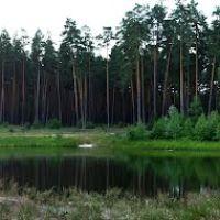Pine lake, Гуты