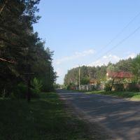Дорога в Гуты, Гуты