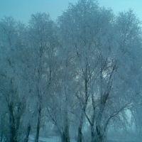 Перші заморозки, Дергачи