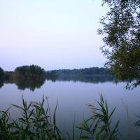 У озера, Зидьки