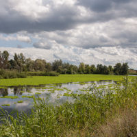 Река Северский Донец (Seversky Donets River), Зидьки