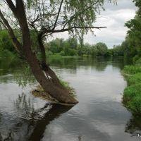 Река С.Донец, Изюм