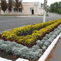 Flowers, Кегичевка