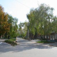 Улочки Краснограда, Красноград